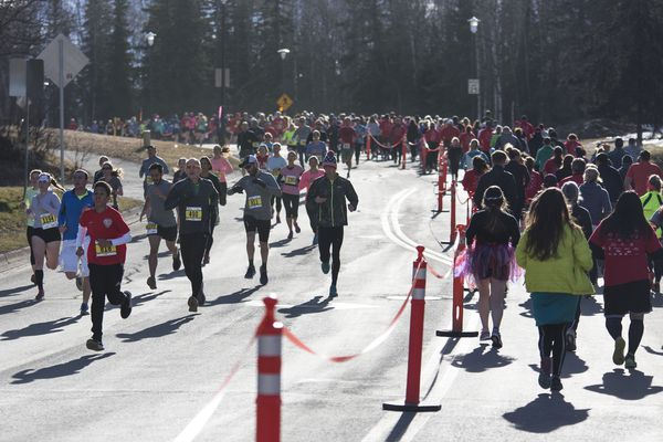 Approximately 4,200 people participated in the Heart Run on Saturday, April 22, 2017, in Anchorage's university district. The Heart Run, a benefit for the American Heart Association, is one of Alaska's largest races. (Rugile Kaladyte / Alaska Dispatch News)