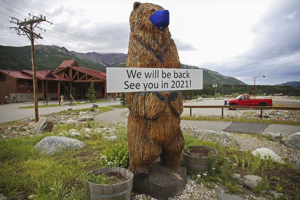 A large sign rests in a mask-wearing wooden bear sculpture announcing the seasonal closure for Denali Princess Wilderness Lodge in Glitter Gulch outside Denali National Park and Preserve on July 12, 2020. The parking lots remained empty with the acceptation of lodge vehicles blocking walkways. (Emily Mesner / ADN)