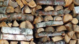 Collect free wood for your stove, fireplace