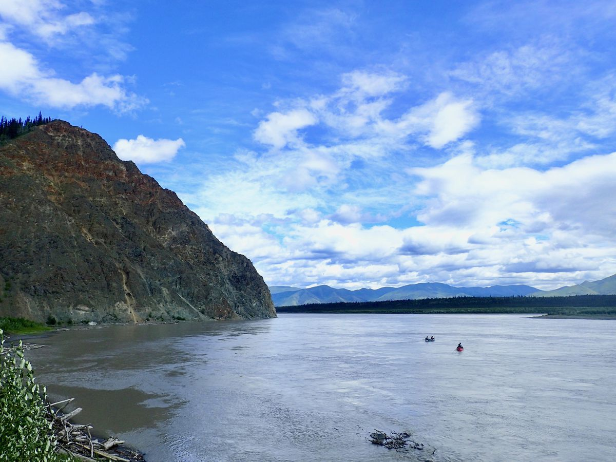 The Yukon River at Eagle, Alaska, in summer 2019. (Photo by Ned Rozell)