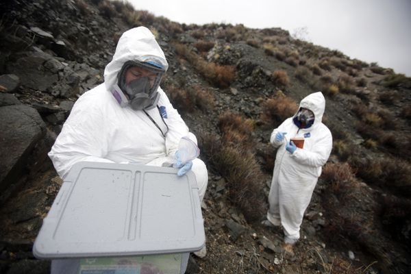 FILE - Geologists Brenda Buck, left, and Rodney Metcalf take samples near Nelson, Nev., where they have found asbestos in the rocks and desert soil, Jan. 30, 2015. Associated with lung cancer and mesothelioma, asbestos has not been manufactured in the United States since 2002, but imports surged last year. (Isaac Brekken/The New York Times)