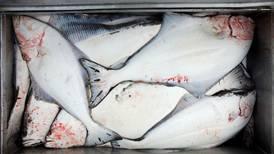 Coastal Villages Region Fund protesting low 2014 halibut quota