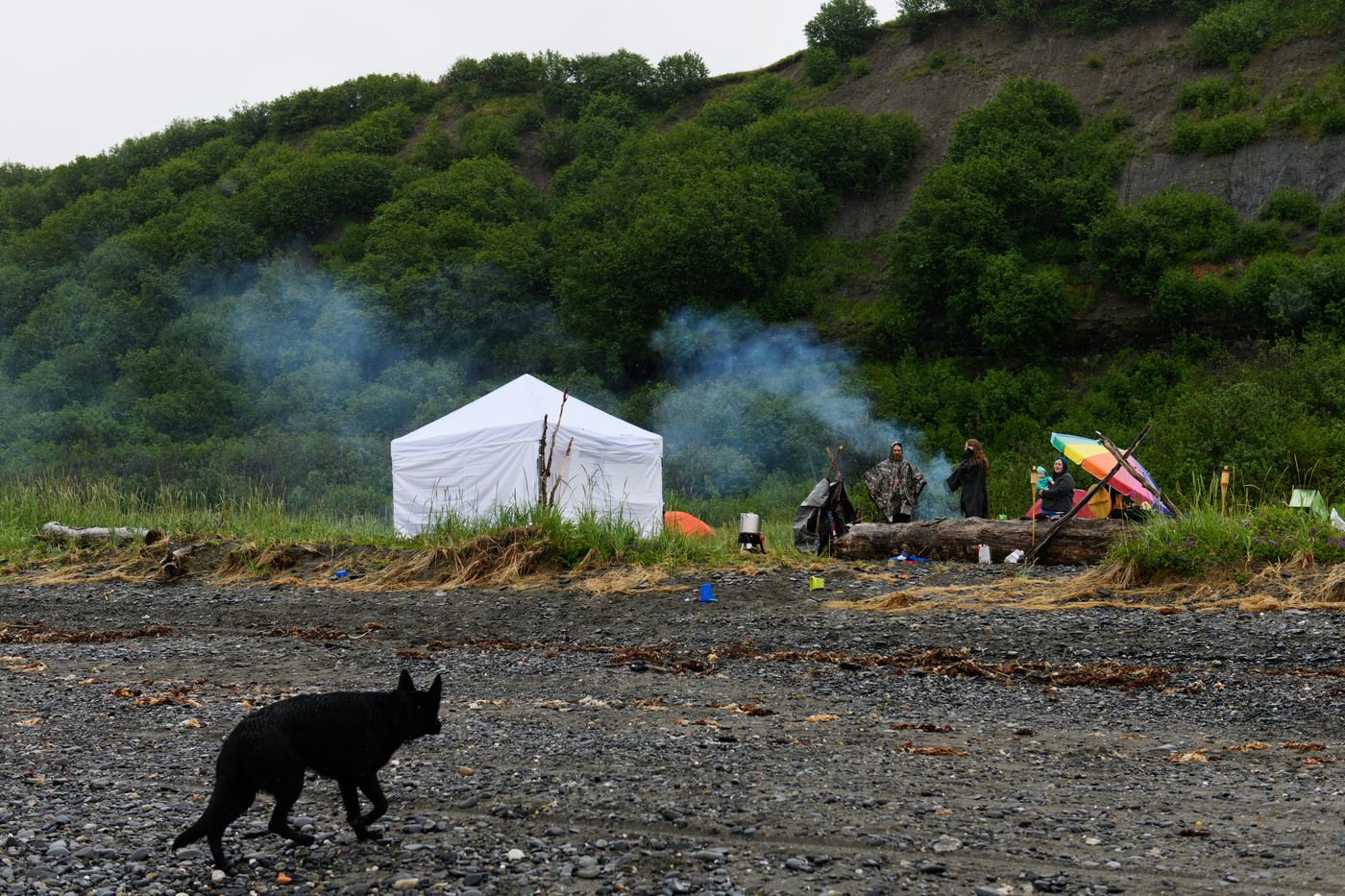 Alaska Heathenry members camped on the beach in Ninilchik for their annual midsummer gathering on June 21, 2018. (Marc Lester / ADN)