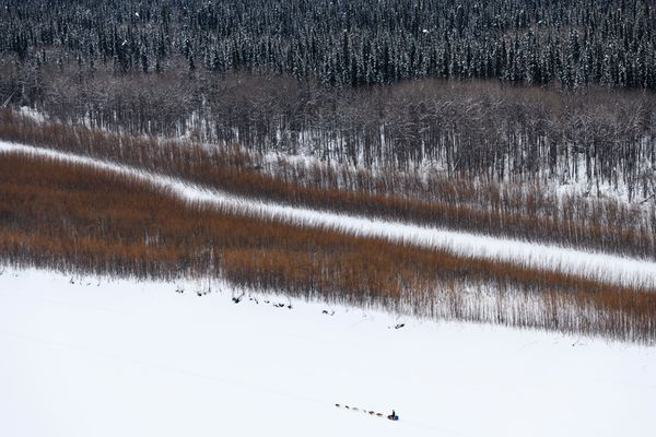 Matt Hall approaches the checkpoint at Eagle Island on the Yukon River during the Iditarod on March 9, 2019. (Marc Lester / ADN)