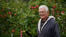 Fall harvest is the fruit of a Palmer apple grower's curiosity