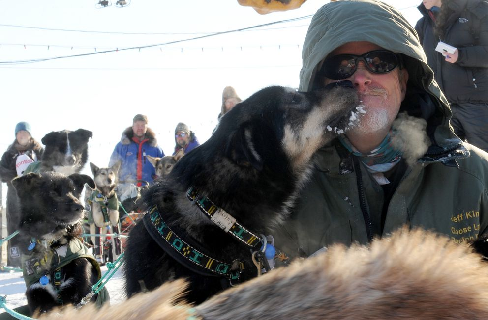 Iditarod musher Jeff King gets a kiss from one of his sled dogs at the finishin Nome during the 2017 Iditarod Trail Sled Dog Race on Wednesday. (Bob Hallinen / Alaska Dispatch News)