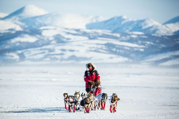 Aliy Zirkle mushes into the Unalakleet, Alaska checkpoint in second place on Sunday, March 15, 2015. Unalakleet is the first checkpoint on the Bering Sea coast, and along with the changes in landscape, come changes to musher's race tactics. (Loren Holmes / ADN archive 2015)