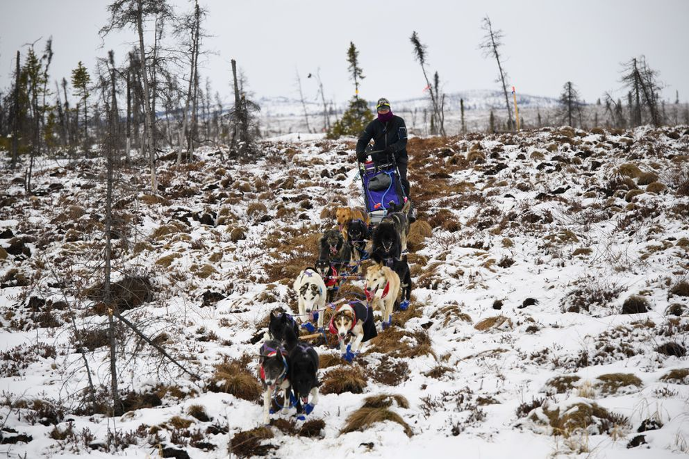 Jessie Royer crosses tussocks as she approaches the ghost town checkpoint of Iditarod on March 7, 2019, during the Iditarod Trail Sled Dog Race. (Marc Lester / ADN)