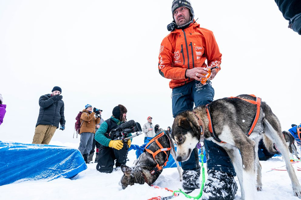 Thomas Waerner takes booties off of his dogs after arriving in Unalakleet during the 2020 Iditarod. (Loren Holmes / ADN)