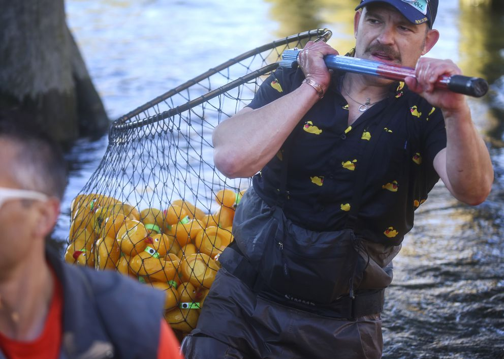 Jason Motyka, who helped organize and lead the event, carries rubber ducks to shore from Ship Creek. (Emily Mesner / ADN)