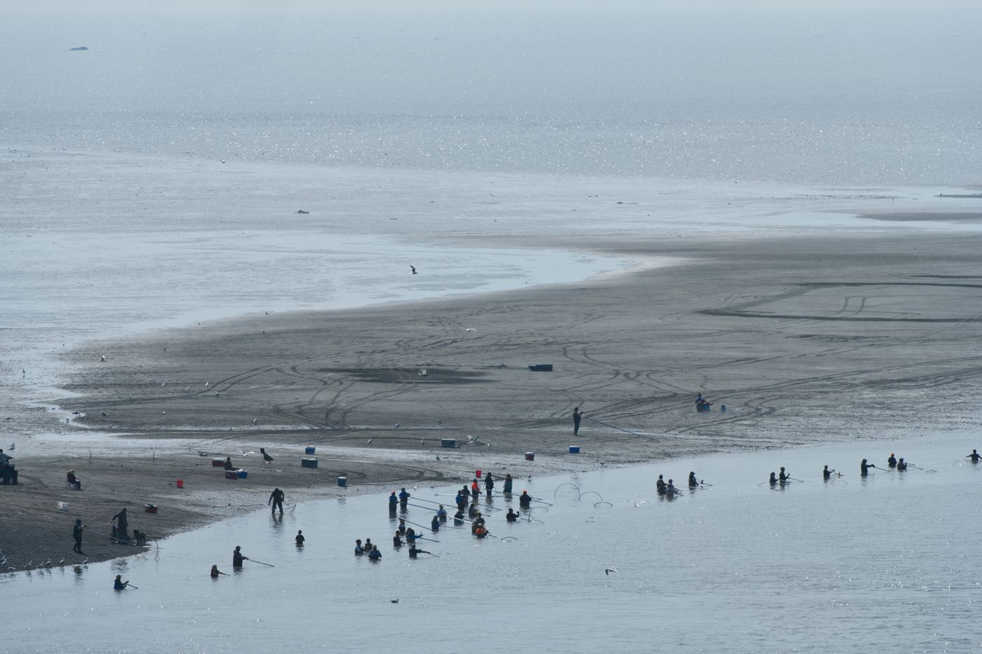 Dipnetters on the Kenai River's south shore are visible from a bluff in the city of Kenai. (Marc Lester / ADN)