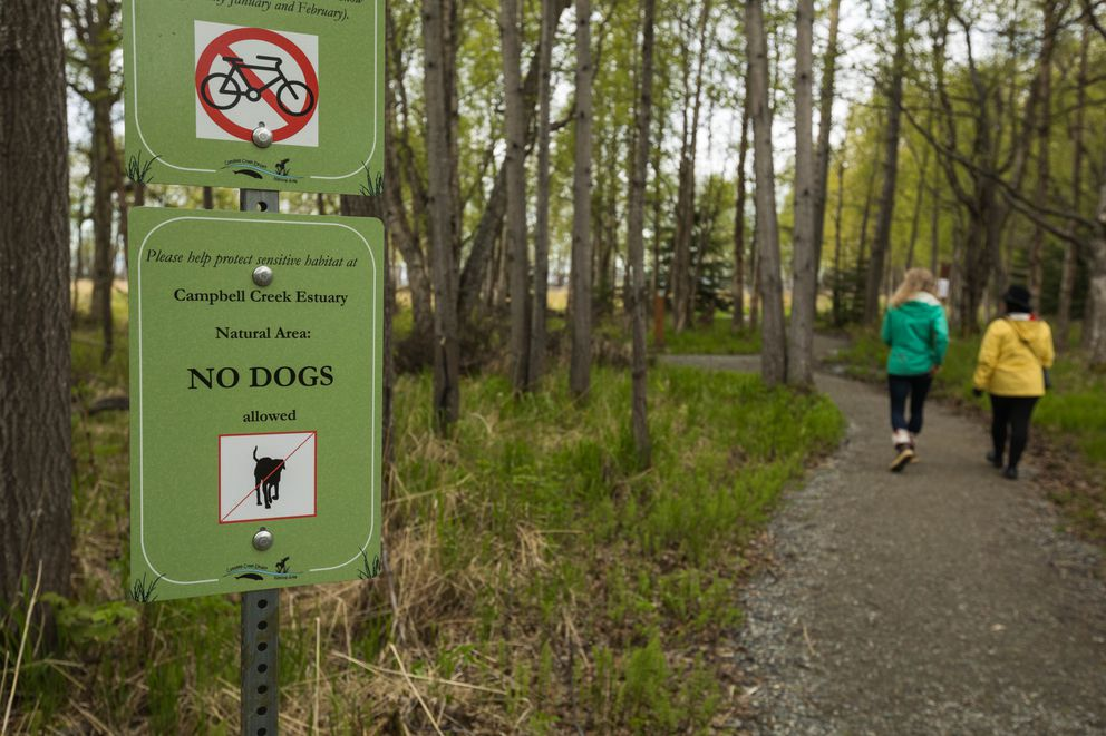 Barbara Carlson of Friends of the Anchorage Coastal Wildlife Refuge, right, walks with a reporter past a sign prohibiting dogs in the Campbell Creek Estuary Natural Area on Wednesday. (Loren Holmes / ADN)