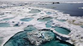 Trump administration pushed to strip mention of climate change from Arctic policy statement