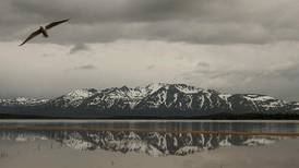 Alaska Native corporation deal with conservation nonprofit complicates planning for massive Pebble mine project