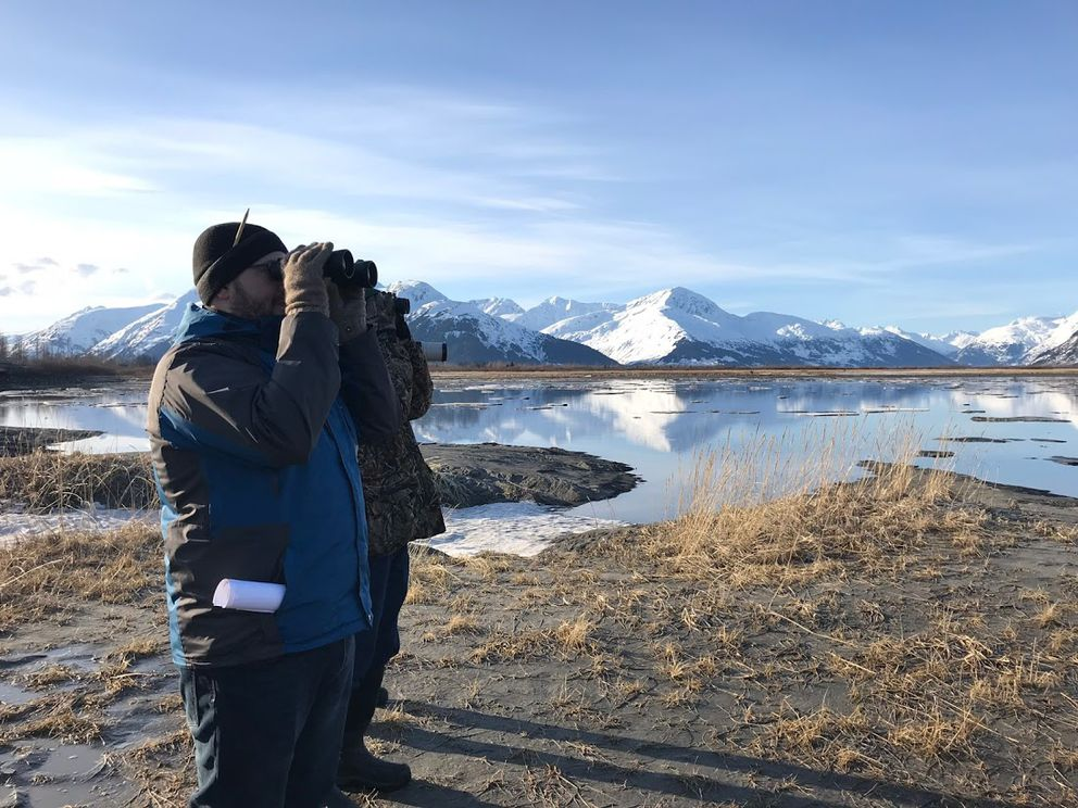 "Viewers scan for belugas during a ""sunrise beluga safari"" on April 14, 2018. The event was co-hosted by Beluga Whale Alliance, Cook Inletkeeper and Four Valleys Community School. (Beluga Whale Alliance photo)"