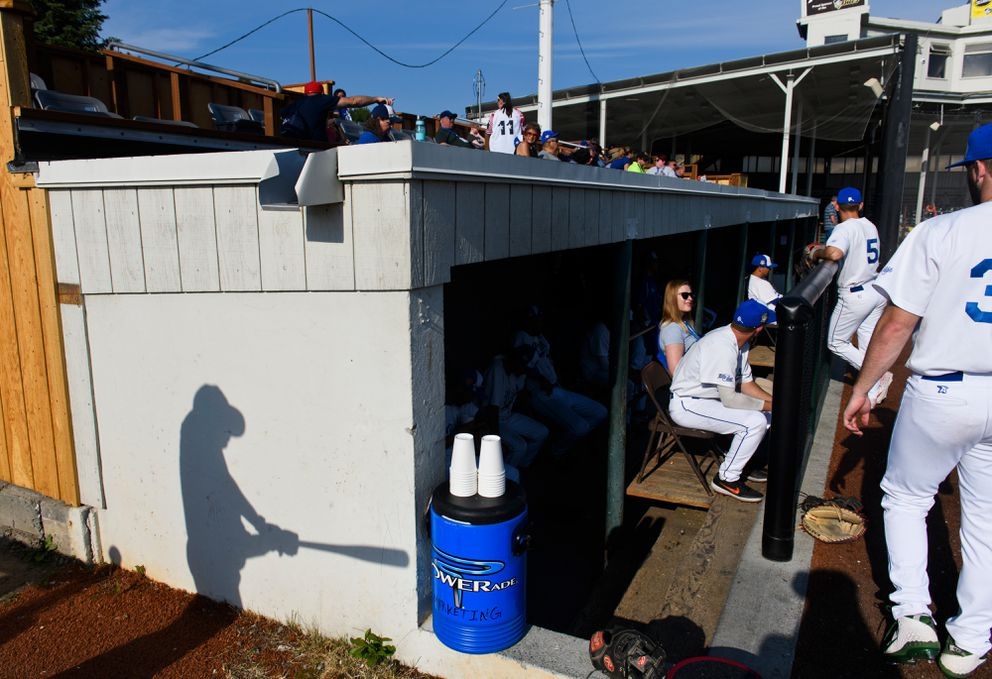 The shadow of an Anchorage Glacier Pilots player falls on the teams dugout at the start of a game on June 26, 2019. (Marc Lester / ADN)