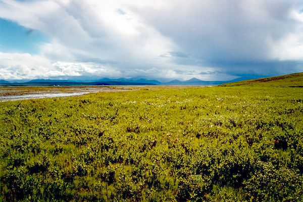 OPINION: In a recent report, Alaska Dispatch didn't say enough about the hard work Arctic Power does in its effort to open the Arctic National Wildlife Refuge to oil and gas exploration.