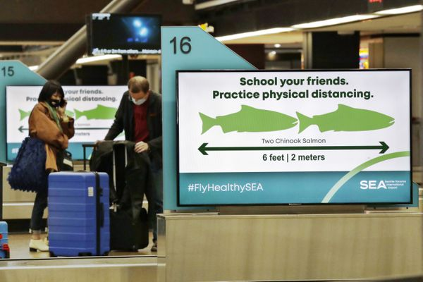 Travelers pick up luggage where signs remind them, with classic Pacific Northwest icons showing the size of two Chinook salmon, to stay six feet apart at Seattle-Tacoma International Airport Monday, May 18, 2020, in SeaTac, Wash. Monday was the first day that travelers at the airport were required to wear face coverings in the public areas there. The Port of Seattle has encouraged its employees to wear face coverings, and all federal agencies that operate at the airport require their employees to wear them. All airlines operating at SeaTac require employees and passengers to wear face coverings. (AP Photo/Elaine Thompson)