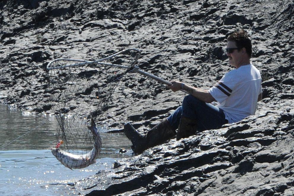 Tyler Hyatt nets a king salmon fishing for fisherman Mark Steblein on the step muddy banks of Ship Creek near downtown Anchorage on Sunday. (Bill Roth / ADN)