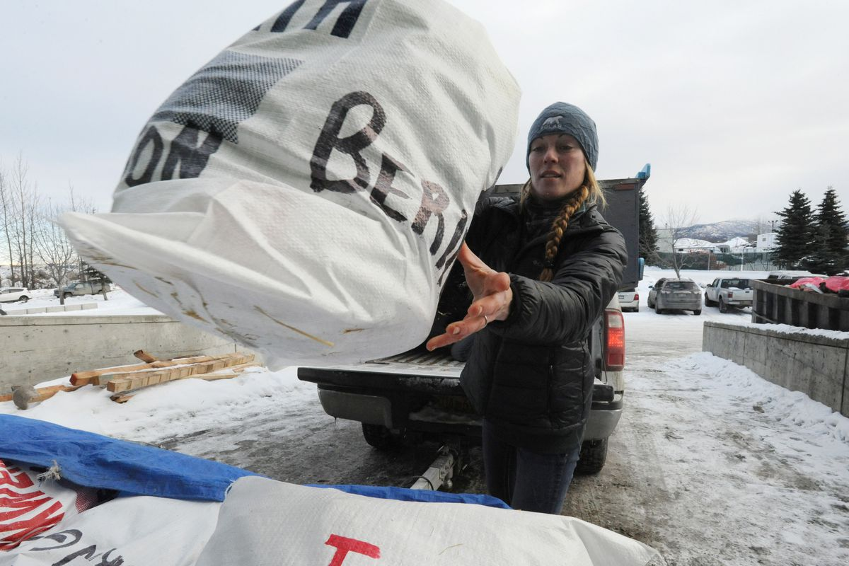 Iditarod veteran musher Kristy Berington delivers her drop bags at Air Land Transport in Anchorage on Wednesday. (Bill Roth / ADN)