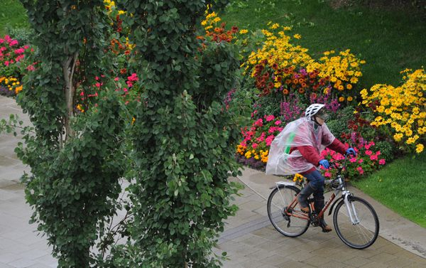 A bicyclist rides past flowers at Town Square Park in Anchorage. (Bill Roth / ADN)