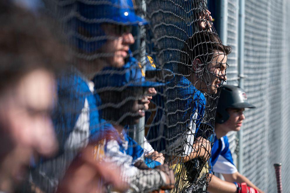 Bartlett baseball players watch the action from the dugout. (Loren Holmes / ADN)