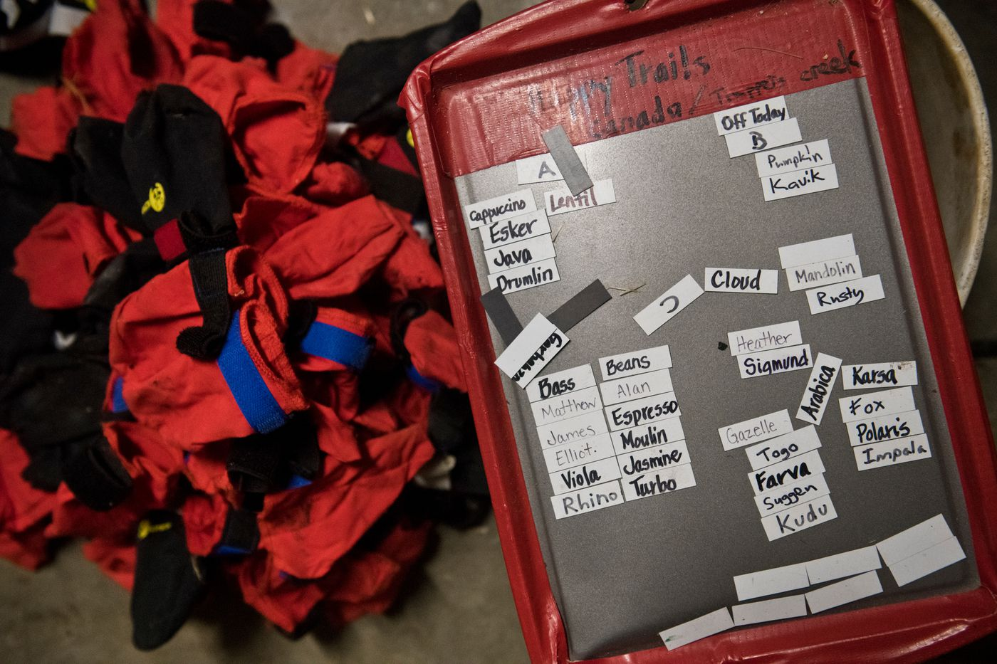 Magnetic labels help Tim Pappas with planning at Happy Trails Kennel in Big Lake on February 25, 2020. (Marc Lester / ADN)
