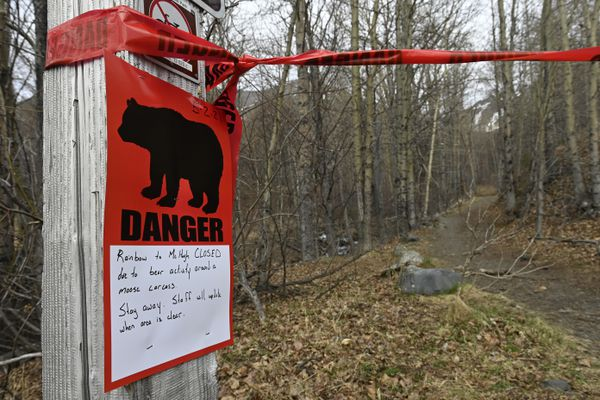 A sign at the Rainbow trailhead shows the Turnagain Arm Trail closed to McHugh Creek due to bear activity on May 3, 2021. (Marc Lester / ADN)