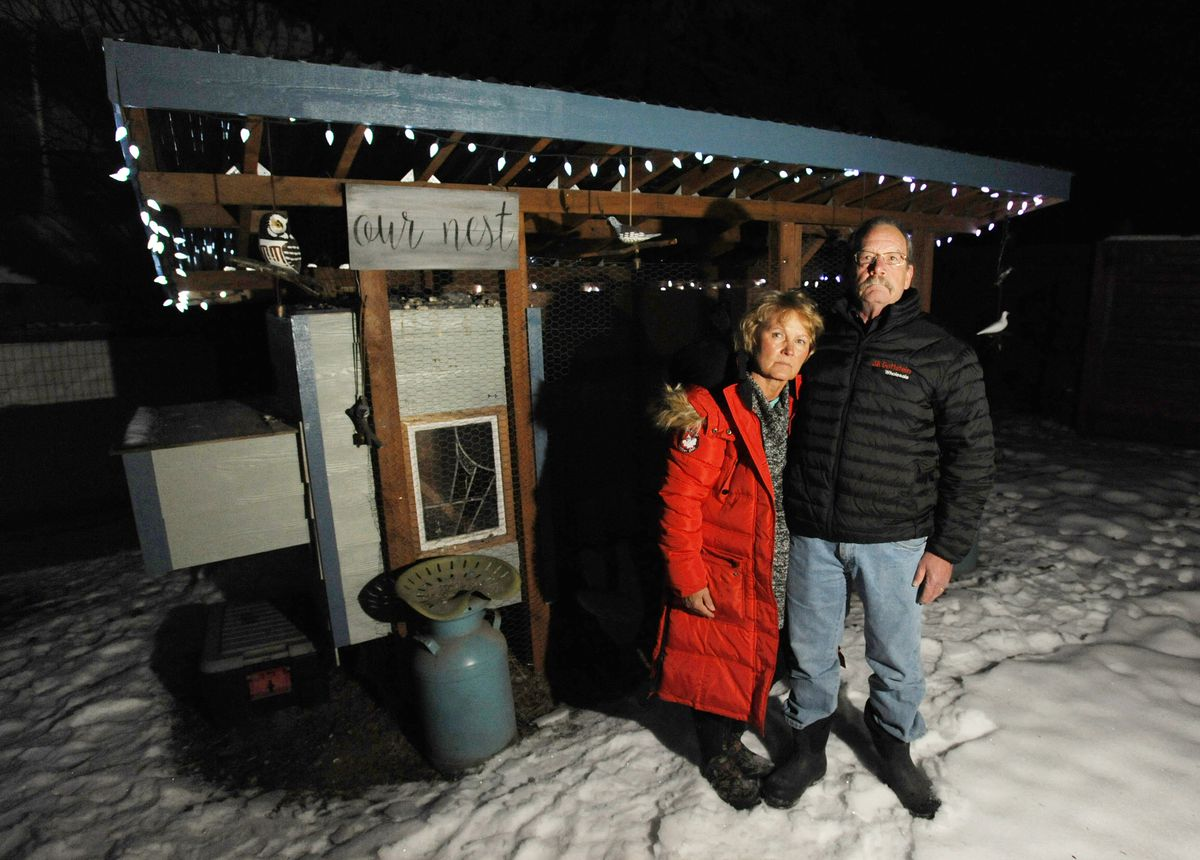 Debra and Dan Dailey with their empty chicken coop in the backyard of their Jewel Lake home on Jan. 22. (Bill Roth / ADN)