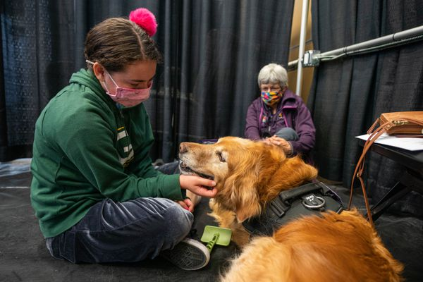 Lillian Notti, 12, pets Grover the dog after she received her first dose of the Pfizer-BioNTech COVID-19 vaccine on Friday, May 21, 2021 at the Alaska Airlines Center in Anchorage. With them is Karen Loeffler, with the group National Crisis Response Canines, who came to calm Lillian so that she could tolerate the shot.