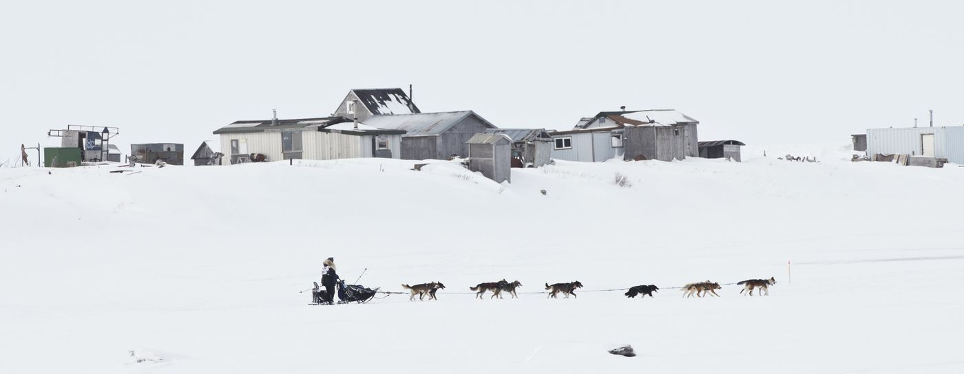 Michelle Phillips passes cabins outside of Nome before finishing the Iditarod Trail Sled Dog Race on March 18, 2020. (Marc Lester / ADN)