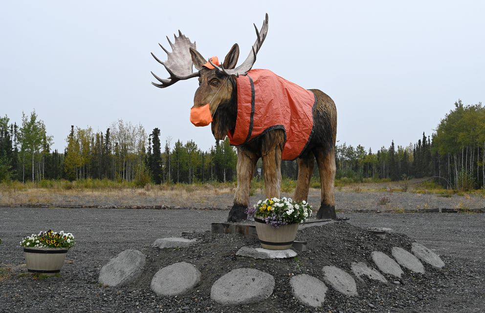 A moose is set for all occasions, as he is wearing a mask and safety orange Sept. 15, 2020. The adorned statue is outside of a Sterling business on the Kenai Peninsula. (Anne Raup / ADN)