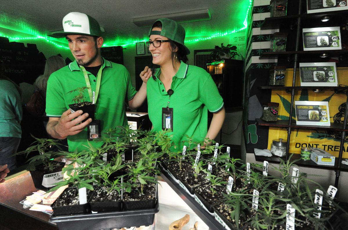 Kerby and Marissa Coman, owners of Green Degree, the first store to feature large-scale commercial Mat-Su-grown cannabis. (Bill Roth / Alaska Dispatch News)