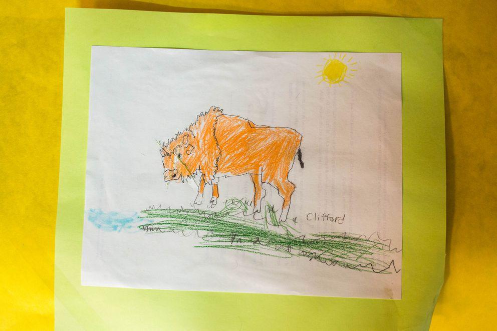 A student drawing of a wood bison at the Innoko River school in Shageluk (Loren Holmes / Alaska Dispatch News)