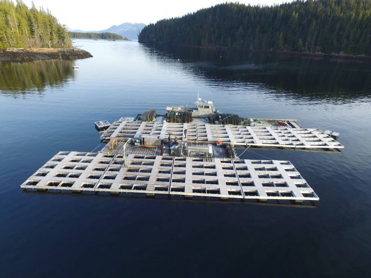 The Hump Island Oyster Co. in Ketchikan. (Photo courtesy Hump Island Oyster Co.)