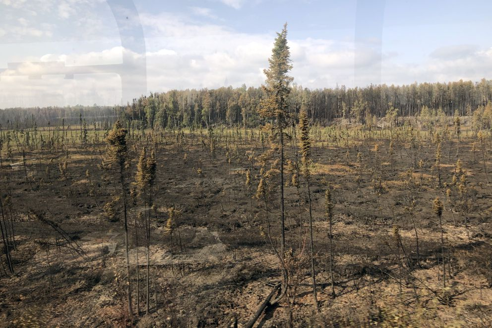 Damage from the McKinley fire, south of Talkeetna, is seen from the Princess Cruise train (Alaska Railroad) Wednesday, Aug. 21, 2019. (Photo by Valerie Myers)
