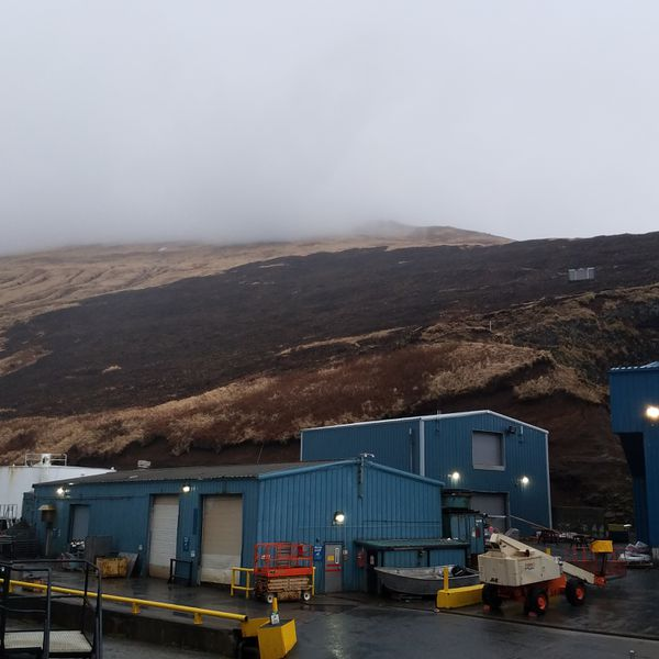 Scorched earth after a fire near the Trident Seafoods plant in Akutan burned up the hillside (Photo by Bill Newberry)