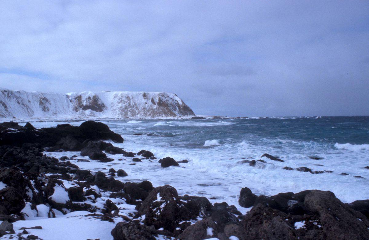 Shemya Island. (D.D. Gibson / U.S. Fish and Wildlife Service)