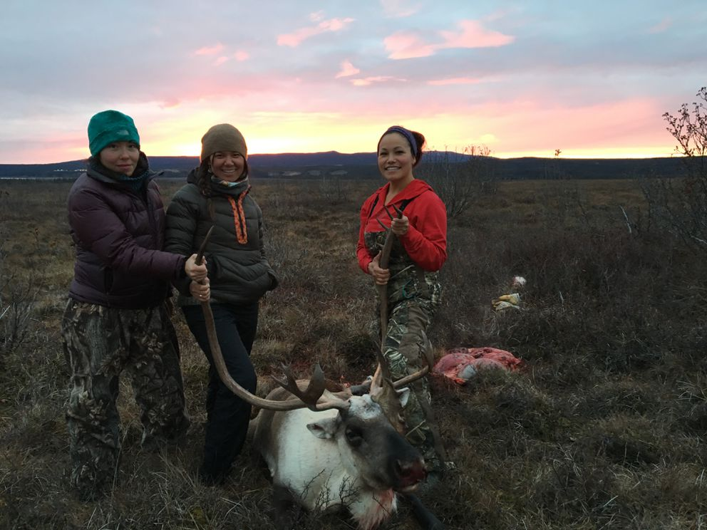 The first caribou harvested during the camping trip, upriver from Kiana. (Laureli Ivanoff)