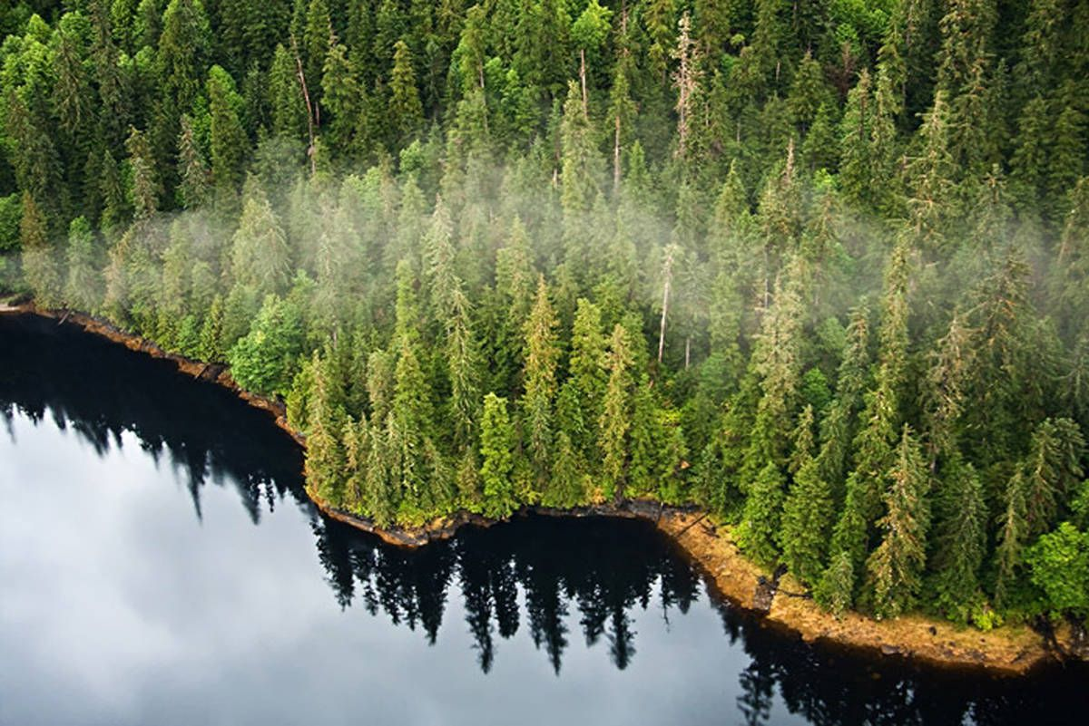 Tongass National Forest (U.S. Forest Service photo)