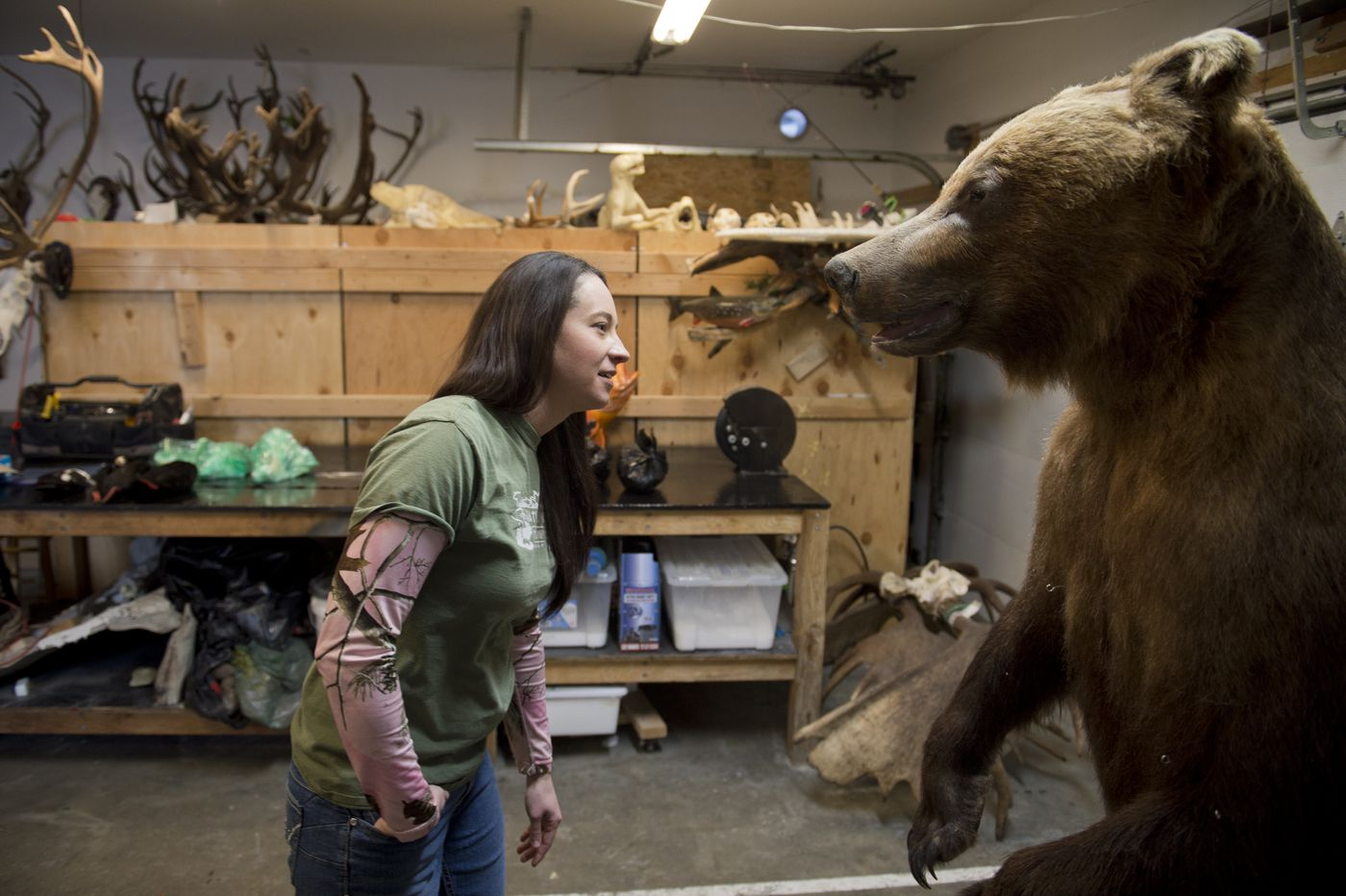Samantha Huckstep takes a look at a Kodiak brown bear project she's working on. After the bear is tanned, she said, a project that size can take her about a month. She operates Naturally Wild Taxidermy from a shop at her Eagle River home. (Marc Lester / ADN)