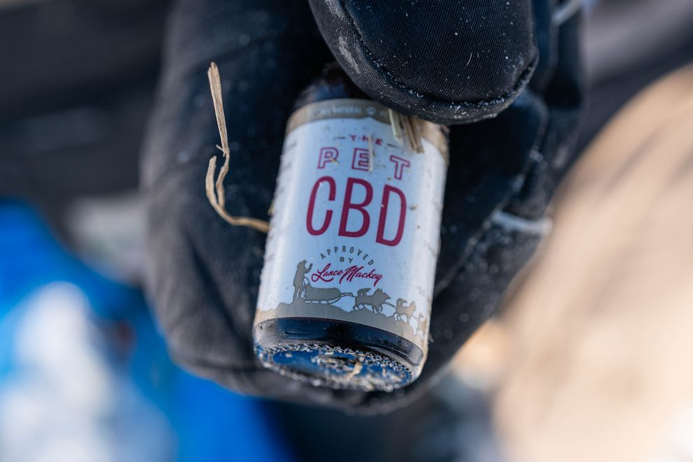 Lance Mackey holds an empty bottle of CBD that he gave to his dog team in Nikolai on Tuesday, March 10, 2020 during the Iditarod Trail Sled Dog Race. Cannabidiol, commonly referred to as CBD, is an extract made from the cannabis plant. (Loren Holmes / ADN)
