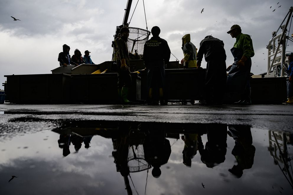 Fishermen sort salmon as they unload the Hokushin Maru. (Photo for The Washington Post by Salwan Georges)