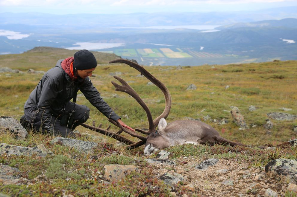 Gabriela Halas with the beautiful bull caribou she took on this hunt. (Photo by Christine Cunningham)