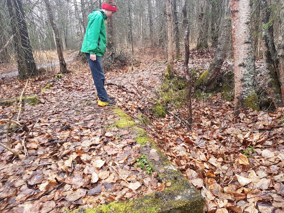 Owen Kirkland explores an old Campbell Garrison building foundation along Viewpoint Trail in the Campbell Tract. (Erin Kirkland)