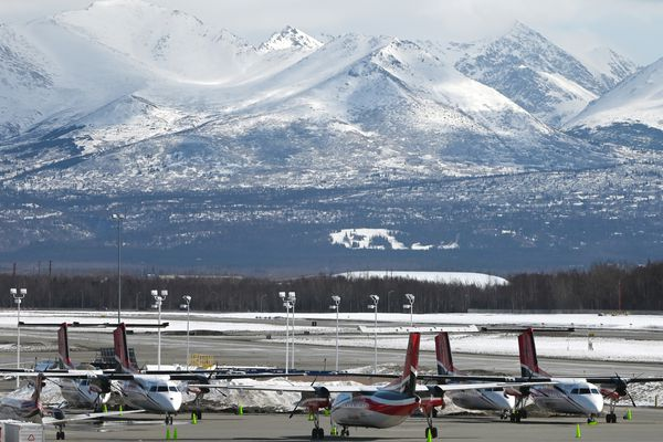 Ravn Alaska De Havilland Dash 8 aircraft and a Ravn Connect Beech 1900, far left, were parked at corporate headquarters at Ted Stevens Anchorage International Airport on Sunday, April 5, 2020. (Bill Roth / ADN)