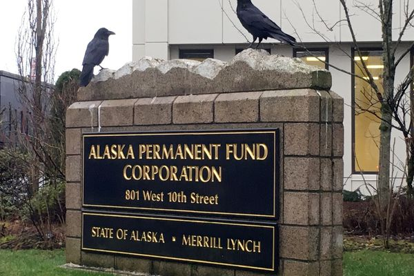 Two ravens are seen atop the sign for the Alaska Permanent Fund Corporation's Juneau offices Tuesday, Dec. 11, 2018. (James Brooks / ADN)