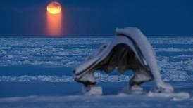 Utqiagvik finally celebrates first successful bowhead hunt of season