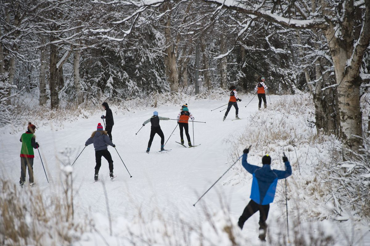 Members of the West High cross-country ski team enter the Mize Loop at Kincaid Park during practice Tuesday. (Marc Lester / Anchorage Daily News)