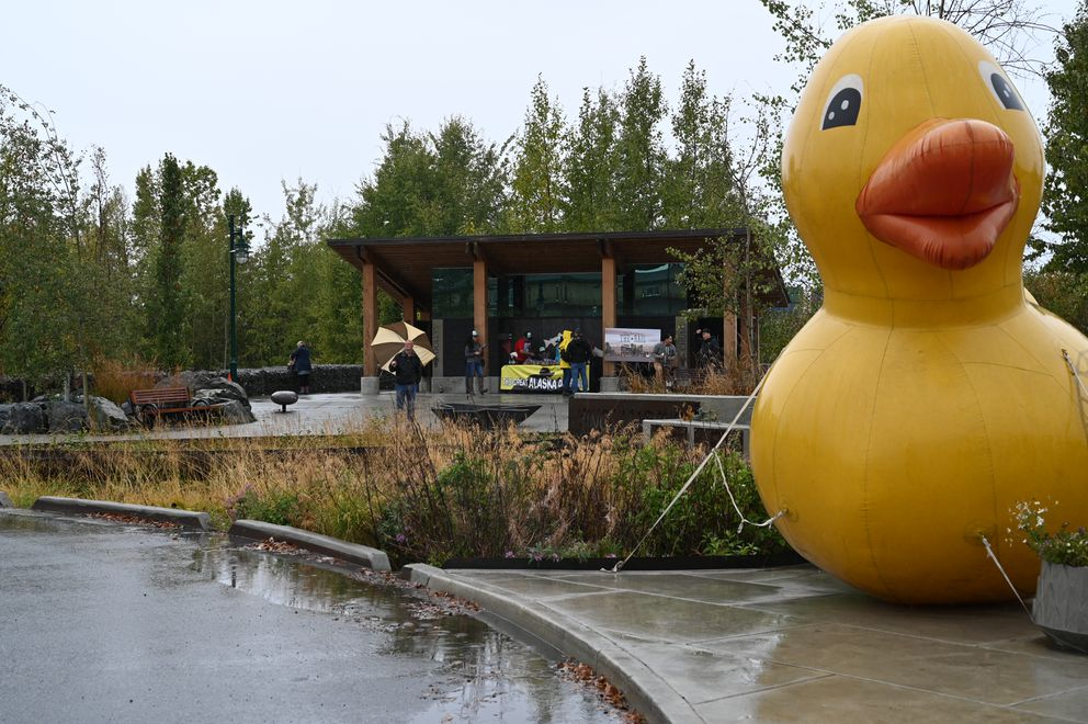 A large, inflatable duck greets spectators to The Great Alaska Duck Race at Anchorage's Ship Creek on Saturday, September 7, 2019. (Jeff Parrott / ADN)